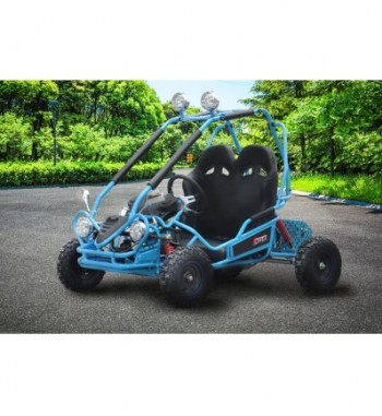 Buggy Eléctrico 750W Brushless